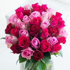cerice_mix_roses